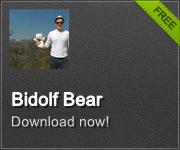 Bidolf Bear