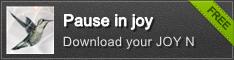 Pause in joy