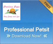 Professional Petsitting Service