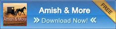 Amish & More