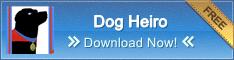 Dog Heiro